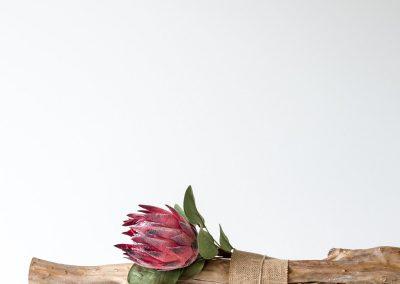 Secret Blooms-3875_e