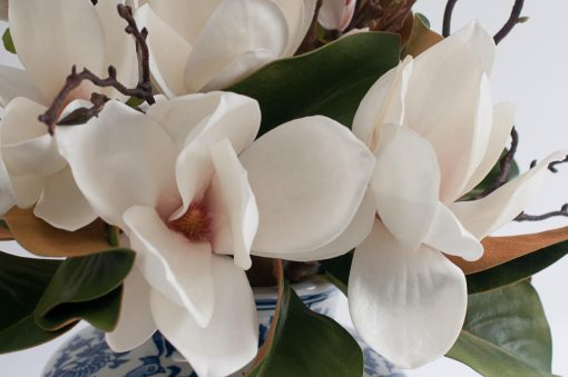 Secret Blooms Ava Artificial Magnolia