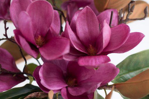 Secret Blooms Blushing Ava Artificial Magnolia Blooms
