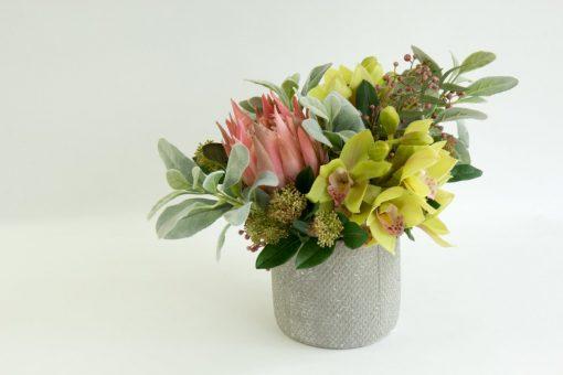 Secret Blooms Harriet Artificial Protea