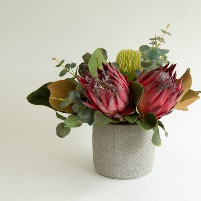Secret Blooms Julia Artificial Protea
