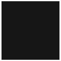 Secret_Bloom_Logo