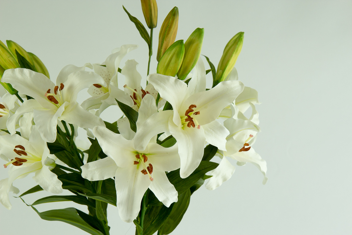 Tiffany bouquet secret blooms tiffany bouquet izmirmasajfo