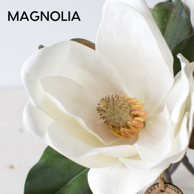 Artificial Magnolia
