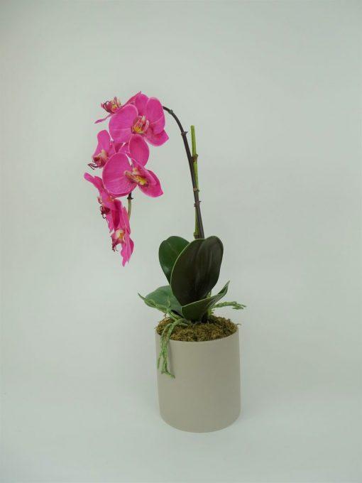 Secret Blooms Rachel Artificial Fuschia Phalaenopsis