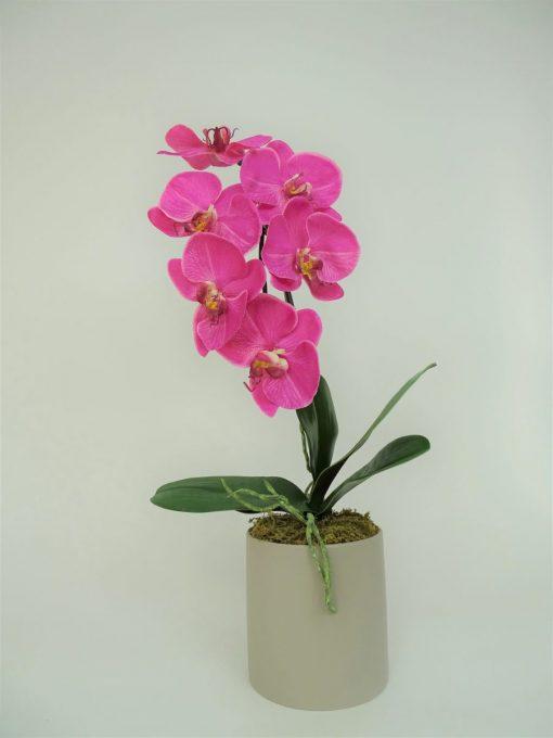 Secret Blooms Rachel Artificial Phalaenopsis Orchid