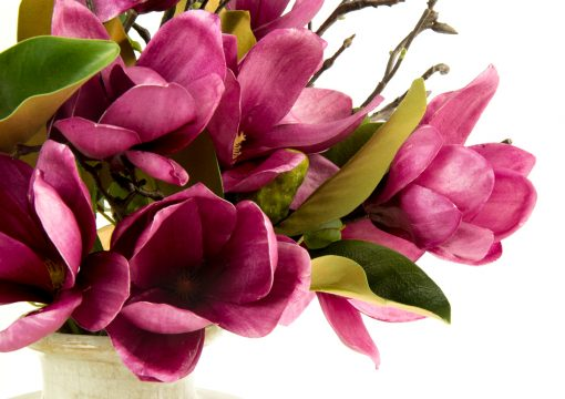 Secret Blooms Artificial Magnolia