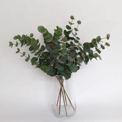 Secret Blooms Matilda Mini Faux Eucalyptus