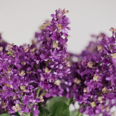 Secret_Blooms_Artificial_Lilac_Stem