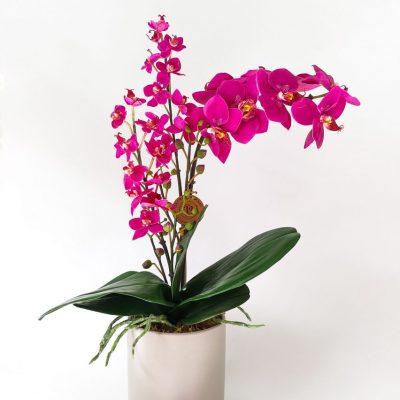 Secret_Blooms_Rachel_Fake_Phalaenopsis_Orchid