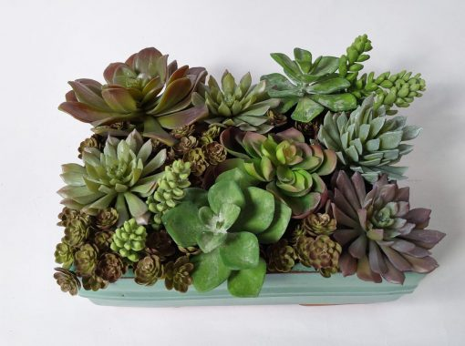 Secret_Blooms_Max_Artificial_Succulent_Design