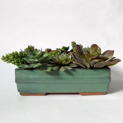Secret_Blooms_Max_Artificial_Succulent_Arrangement