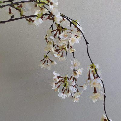 Secret_Blooms_Hanging_Cherry_Blossom_Stem