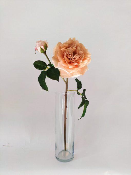 Secret_Blooms_Dutchess_Rose_Stem
