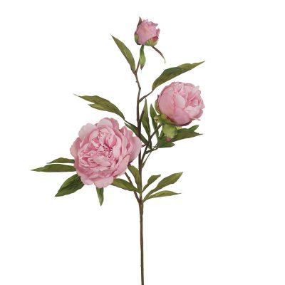 Secret_Blooms_Multi_Headed_Peony_Stem