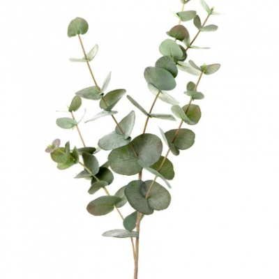 Secret_Blooms_Real-Touch_Artificial_Eucalyptus_Stem