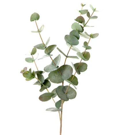Secret_Blooms_Real-Touch_Artificial_Eucalyptus_Stem