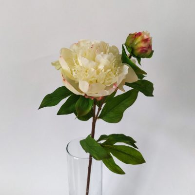 Secret_Blooms_Real-touch_Peony