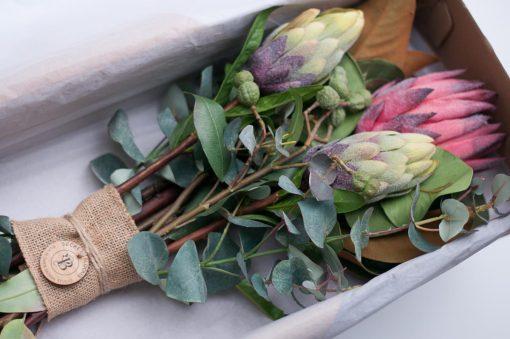 Secret_Blooms_Nicole_Bouquet_Box