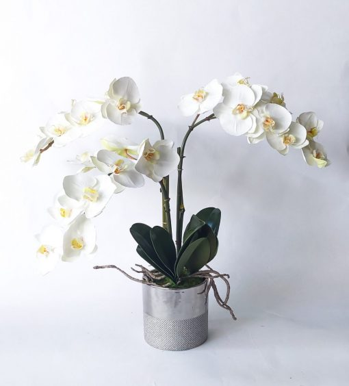 Secret_Blooms_Artificial_Phalaenopsis_Orchid