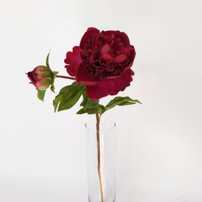 Secret_Blooms_ruffled_faux_peony_stem