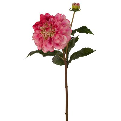 Real touch Dahlia Pompom flower stem