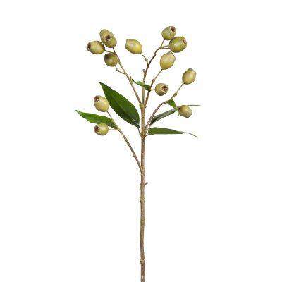 Gumnut-spray-stem