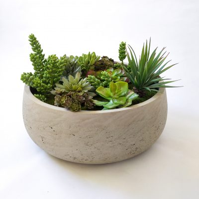 Large-succulent-table-arrangement