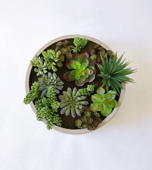 large-table-succulent-garden