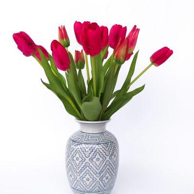 Tina-Fuschia-Tulips