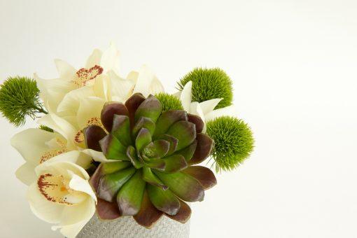 Artificial-Succulent-Small-Table-Arrangement