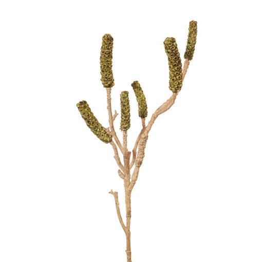 Artificial-Bottlebrush-Native-Flower-Stem