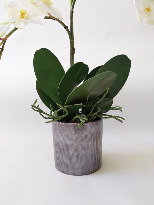 Artificial-Orchid-Silver-Pot