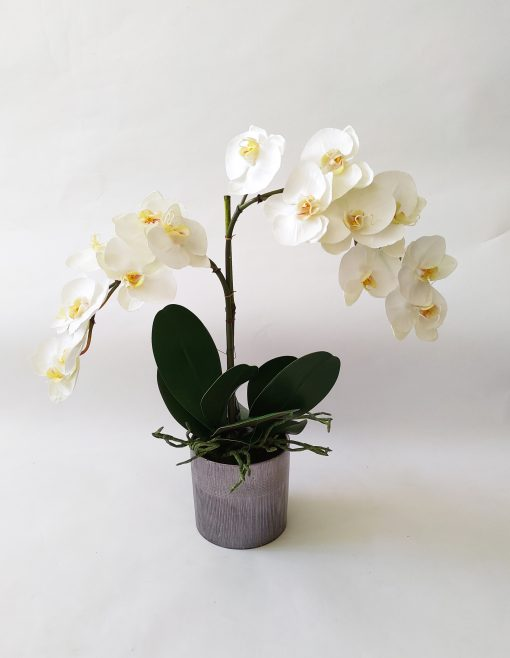 Artificial-orchid-real-touch-Phalaenopsis