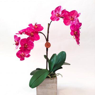 Realistic-orchid-arrangement