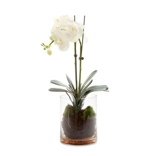 Artificial-Phalaenopsis-Orchid-Glass-Pot