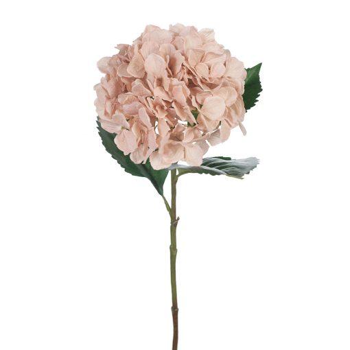 Hydrangea-Dusty-Pink-Stem