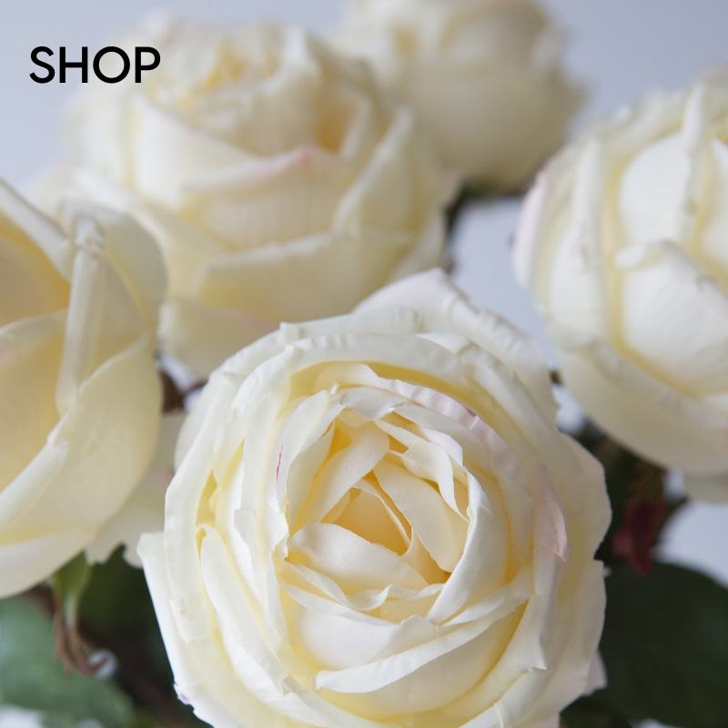 Shop-Secret-Blooms