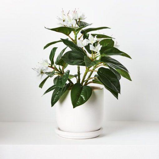 real-touch-azalea-pot-plant